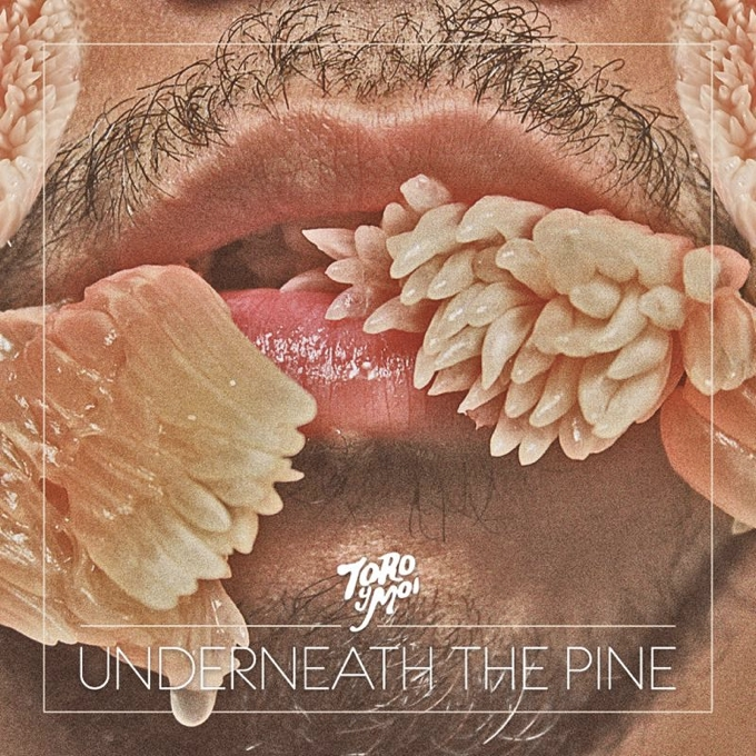Toro Y Moi - Beneath The Pine